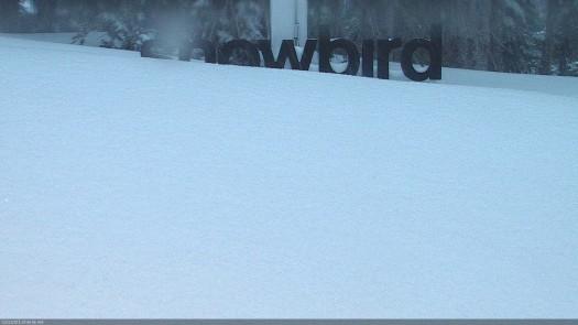 SnowCam_main